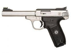 Smith Wesson 22A