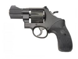 Smith Wesson Model 310 Night Guard
